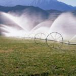 irrigation_fish_springs